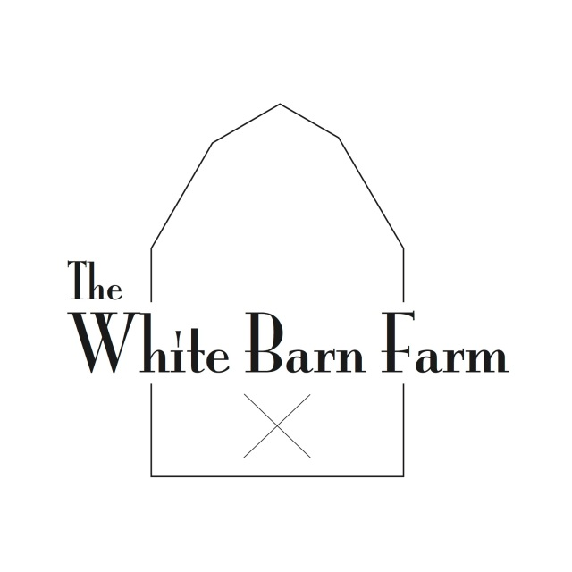 white-barn-farm